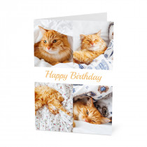 Birthday Photo Card with a 4 Image Collage & Banner (A5)
