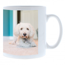 Single Image Wrap Mug